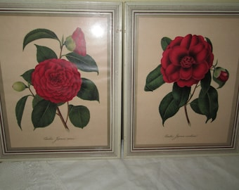 Pair Floral Prints Framed Flowers Red Flower Vintage Red Vintage Home Decor Vintage Glamping Country Cottage Chic Gardener Botanical Print