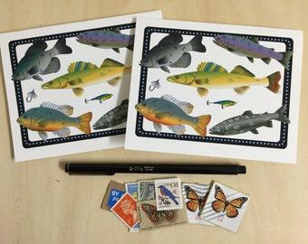 Fish Specimen Collage Notecards - Set of 2