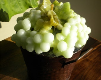 Grapes in the Vineyard Bucket Gel Candle