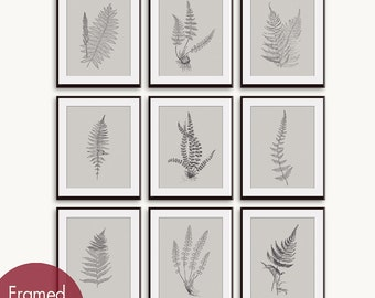 Ferns Garden Botanical Prints (Series E) Set of 9 -Art Prints (Featured in Charcoal on Bombay Grey) Nature Inspired Wall Decor