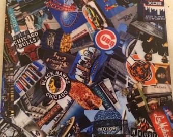 Chicago Coaster 4 Piece Set