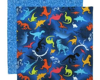 Dinosaurs Napkin, Kids Cloth Napkin, Kids Napkin Boys, School Lunch Napkin, 1 double sided dinosaur fabric napkin