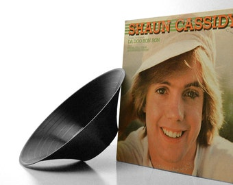 The Shawn Cassidy GrooveBowl