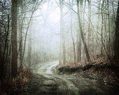 Surreal Dark Landscape Print, Dark Woodland Path Photograph, Surreal Forest Path, Dark Foggy Forest Road Photograph 8x10