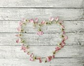 Rustic Woodland Shabby Rose Heart. Pastel Botanical Print. Rose Hips. Petals.  Photography Print. 5 x 7