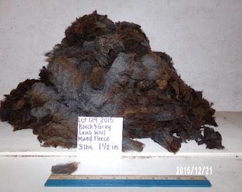 Black and Gray Lamb Wool Lot 129 2015