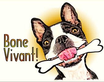 Boston Terrier BONE Vivant  card