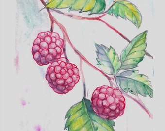 Wildberry Watercolor