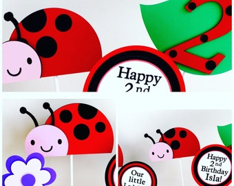 6 Piece Little Ladybug Centerpiece