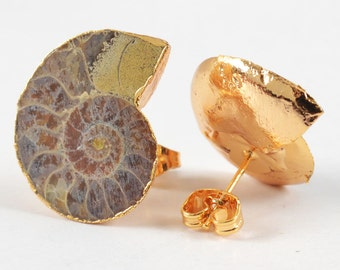 D E L I A // Ammonite Fossil Earrings in 22k Gold Plate // Post