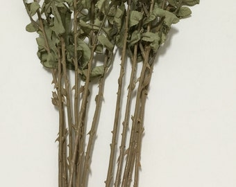 TEN Artificial Flower Stems with Dry Look Leaves for DIY Wedding Bouquets, Flower Arrangements