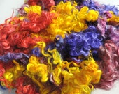 Multi Colored Beautiful Lincoln Lamb Locks 1 Ounce 2 To 5 Inches  Super Clean