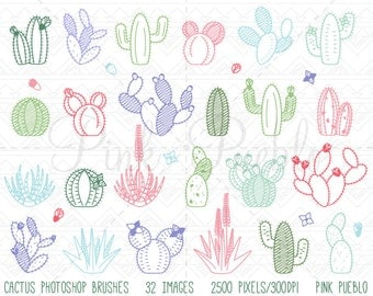 Cactus Photoshop Brushes, Succulent Photoshop Brushes - Commercial and Personal Use