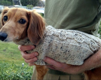 PDF Download Knit Pattern for the EZ Banjo Cable Mini Dachshund Sweater