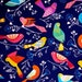END OF BOLT 1 Fat Quarter Birds Fabric, colorful birds fabric from Michael Miller 100% cotton for Quilting, arts, crafts and general sewing