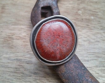 Fossilized coral and sterling ring
