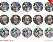 Sale -  Bottlecap Images Digital Collage Sheet One Inch Circles Whimsical Owls Set 1 4x6 Bottle Caps