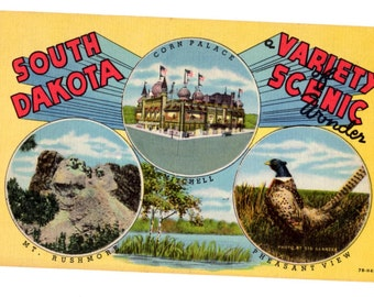 Greetings from South Dakota Vintage Postcard