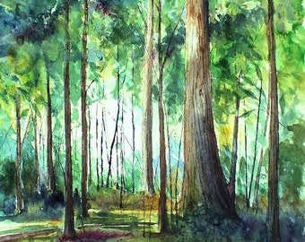 SYCAMORE WOODS Original Watercolor and Ink painting