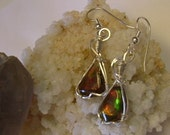Red, Orange Green and Yellow Gem Ammolite from Utah Deposit in Argentium Sterling Silver Wire Wrapped Earrings 417