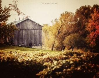 Autumn Decor, Fall Decor, Farmhouse Decor, Rustic Home Decor, Rustic Wall Decor, Photograph of Barn in Fall Colors, Barn Picture in Autumn.