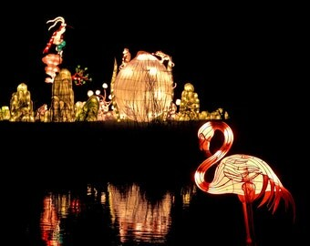 Chinese lantern photography, Chinese lantern home decor, lantern art print -