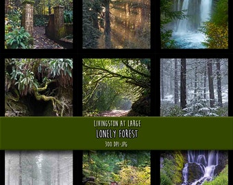 9 Lonely Forest Sheets INSTANT Digital Download Scrapbook Printable-JPG