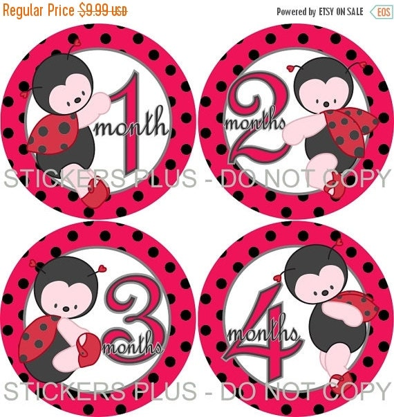 SALE Baby Girl Monthly Stickers Plus FREE Gift Ladybug Lady Bug PRECUT Bodysuit Milestone Baby Month Stickers Monthly Baby Photo Prop