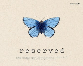RESERVED for Erica