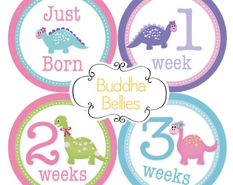 Dinosaur Girl Newborn Set of Monthly Stickers Includes a Just Born Sticker plus Weeks 1-3 Stickers Baby Shower Gift for New Moms GN158