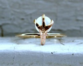 Crazy Claw Vintage 14K Yellow Gold Cat's Eye Moonstone Ring Conversion Ring.