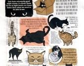 Cat fact cotton tea towel