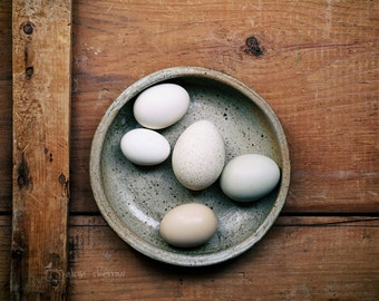 Still Life Photography, Modern Rustic Wall Art, Kitchen Decor, Farmhouse Style Art, Egg Print | 'Speckled'