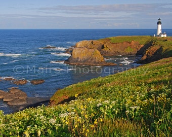 Pacific Northwest Oregon Newport Yaquina Ocean Wildflowers Lighthouse Landscape, Fine Art Photography matted & signed Original Photograph