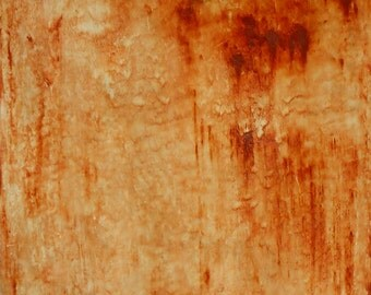 "Original oil and wax painting on 9"" x 12"" wood panel by Sarah Ettinger titled ""Rust""."