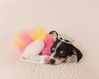 Dog tutu, puppy tutu, you choose color pet tutu, animal tutu, doggy photo prop, doggy tutu, doggy photo prop