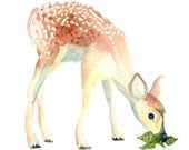 Fawn No.4, Archival Print of Original Watercolor, you choose size