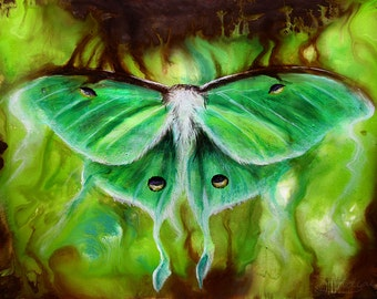 Original - Luna Moth Painting by Danielle Trudeau 12x16 Acrylic and Oil Painting Wildlife