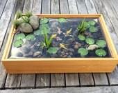 Beautiful Miniature Koi Pond in Bamboo