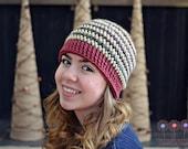Crochet Pattern Winter's Bliss Beanie, Sizes newborn, baby, toddler, child, pre-teen/adult unisex