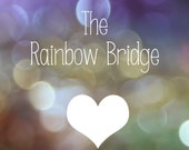 The Rainbow Bridge - Handmade Pendant