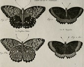 1789 Antique print of BUTTERFLIES, different species. Insects. Entomology. Silkmoths. Diderot Encyclopédie Engraving. 228 years old print