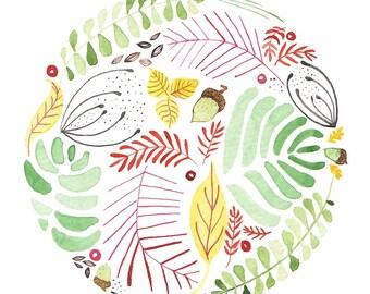 Acorn Circle-Watercolor Painting Print-Nature Art