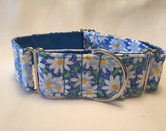"1.5"" Blue Daisies Martingale Collar"