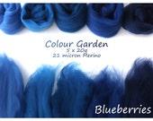 Blue Merino Shade sets - 21 micron Merino wool - 100g - 3.5oz - 5 x 20g - Colour Garden - BLUEBERRIES