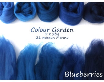 Blue Merino Shade sets - 21 micron Merino wool - 100g - 3.5oz - 5 x 20g - Colour Garden - BLUEBERRIES