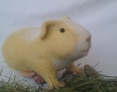 Needle felted guinea pig, Golden