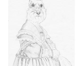 Schnauzer In A Dress Pencil Study, Original Artwork, Dog Portrait