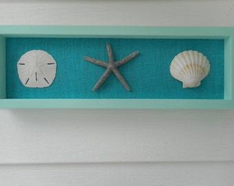 25% OFF SALE - Handmade wooden sea shell shadow box frame / beach decor / nautical decor