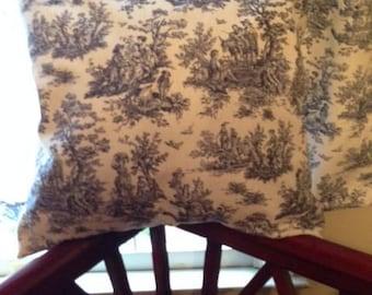 Blue toile pillow